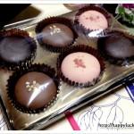 バレンタインチョコレート2012 店頭・通販・ペット編