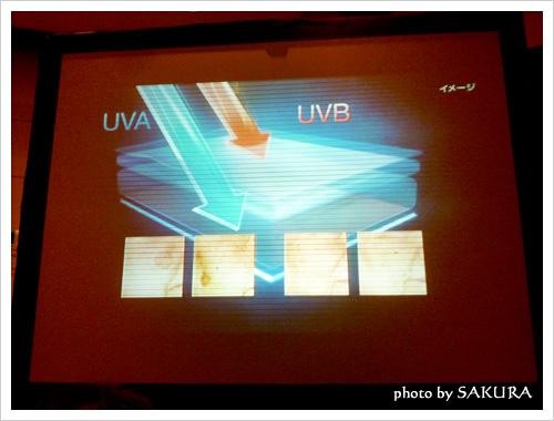 UVAとUVBの説明画面