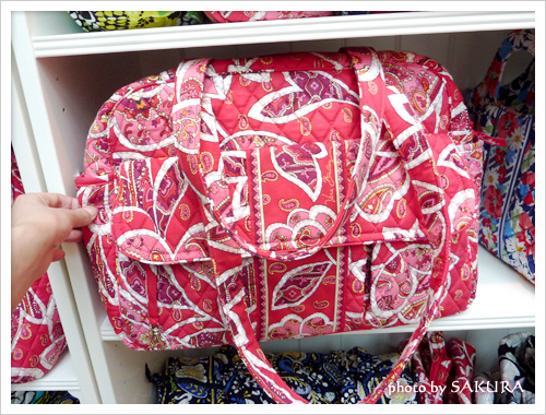 Baby Bag ベビー・バッグ Rosy Posies