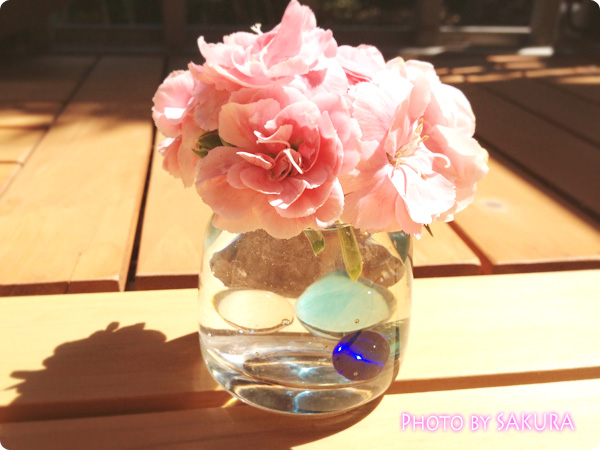 切ったあとのカーネーションは、小さな花瓶に入れても可愛い