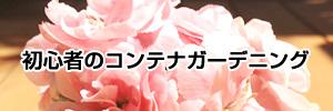 初心者ガーデニング