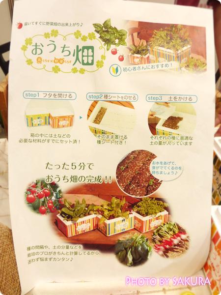 超お手軽簡単野菜キット『おうち畑』の利用方法