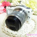 はじめてのミラーレス一眼レフカメラ、パナソニック「LUMIX DMC-GF5」を買った。開封の儀[その1]