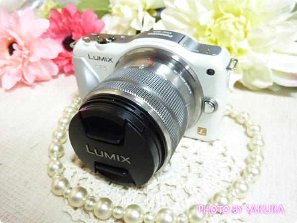 パナソニック「LUMIX DMC-GF5WA」本体と付属レンズLUMIX G X VARIO PZ 14-42mm/F3.5-5.6