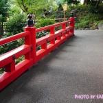 ホテル椿山荘東京の歴史と趣のある自然溢れる庭園を散策