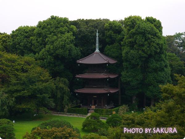 ホテル椿山荘東京 空中庭園からの展望