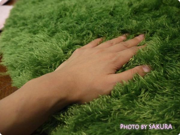 森のじゅうたんシバーの会 毛はふわふわもこもこ