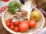 【はじめての方限定】無添加、有機野菜などの安全な食材宅配スーパー・Oisix(おいしっくす)「おためしセット」
