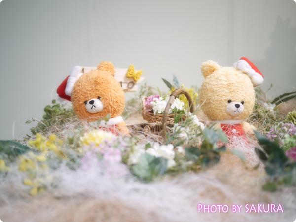 ルルロロのクリスマス アップ