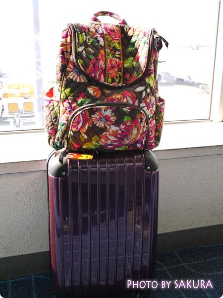 小型軽量スーツケース・機内持ち込みSサイズ【YKK・TSAロック】キャリーバッグ2日~3日旅行用【送料無料】@羽田空港ロビーにて