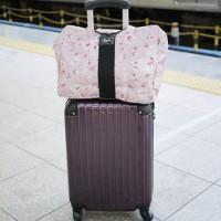 小型軽量スーツケース・機内持ち込みSサイズ【YKK・TSAロック】キャリーバッグ2日~3日旅行用【送料無料】 エコバックをつけてみた