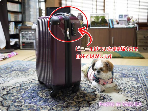 小型軽量スーツケース・機内持ち込みSサイズ【YKK・TSAロック】キャリーバッグ2日~3日旅行用【送料無料】 外のビニールは自分で外す