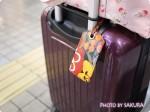 はじめてのスーツケース・キャリーケース選び。機内持ち込みSサイズを激安で買った