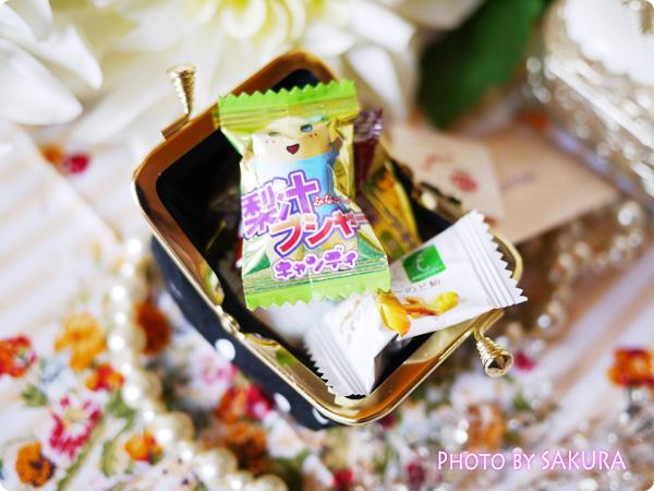 がま口専門店「AYANOKOJI-あやの小路」×good day コロロンがま口財布 飴玉入れにも