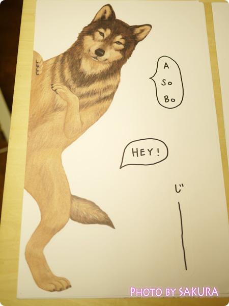 物陰からひょっこり顔を出す 動物たちのウォールシールの会 狼柄