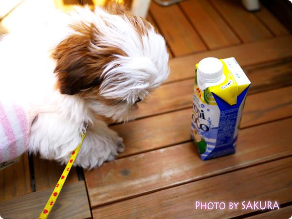 tropicoco[トロピココ] 愛犬との散歩のあとにも!