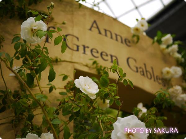 国際バラとガーデニングショウ2014『赤毛のアンの庭』門アップ