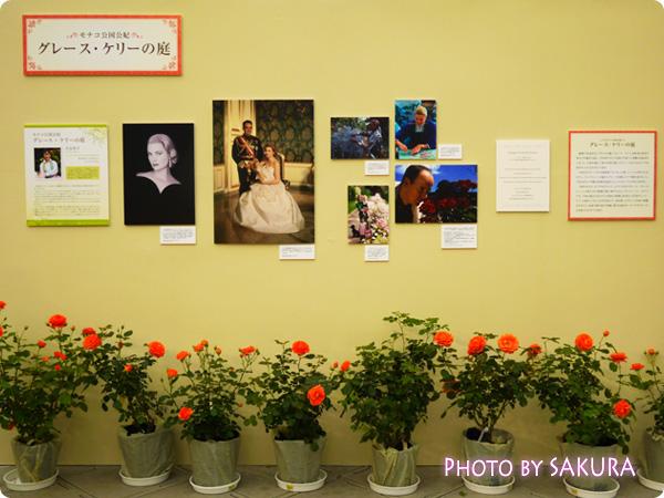 第16回国際バラとガーデニングショウ『グレース・ケリーの庭』写真