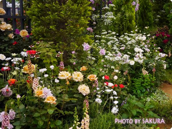 フラワーアーティスト ローラン・ボーニッシュ 『Provance~プロヴァンスな幸せな一日~』バラの庭