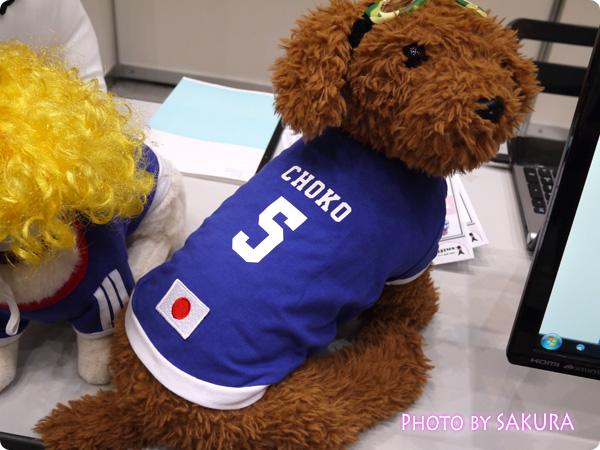 sniff(スニフ) ペット用サッカーユニフォーム 名前・背番号入り日本代表
