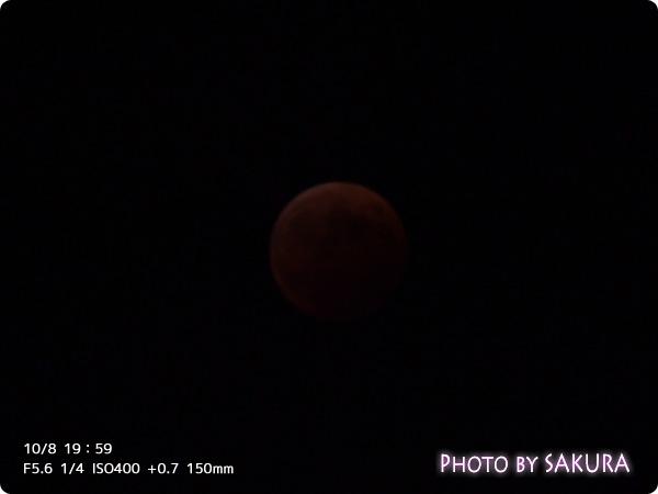 10/8 19:59 皆既月食 F5.6 1/4 ISO400 +0.7 150mm