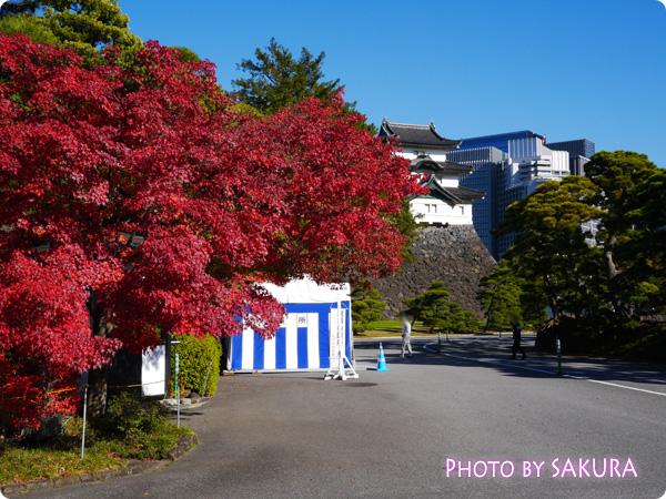 秋季皇居乾通り一般公開 桔梗門の方角