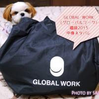グローバルワーク福袋2015 ウィメンズ(レディース)