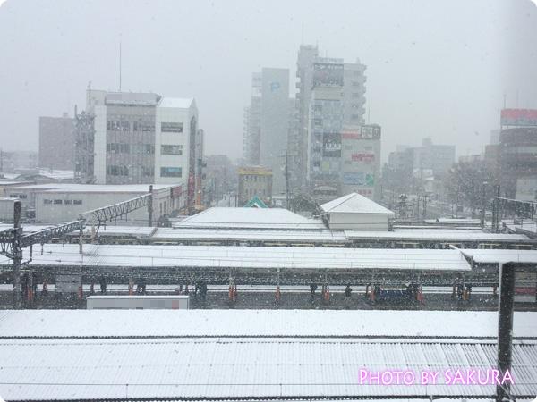 2015年1月30日今季初積雪だった