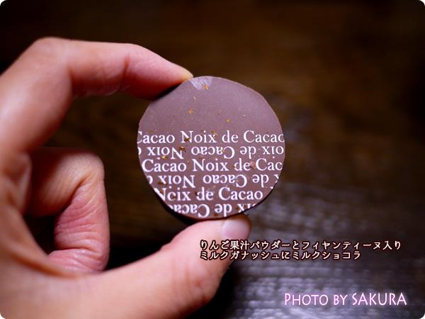 noix de cacao(ノワドカカオ) リッシュショコラ りんご果汁パウダーとフィヤンティーヌ入りミルクガナッシュにミルク ショコラ