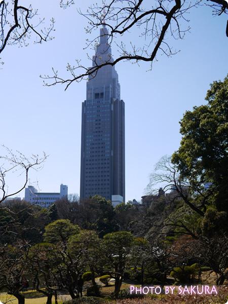 新宿御苑 2015