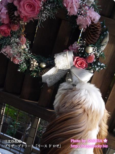 日比谷花壇 クリスマスリース インテリア プリザーブドリース「リース ド ロゼ」 花の香りがします