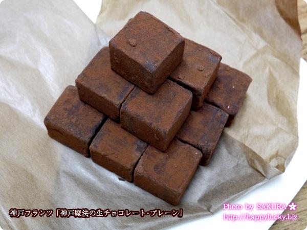神戸フランツ「神戸魔法の生チョコレート・プレーン」 生チョコ全体