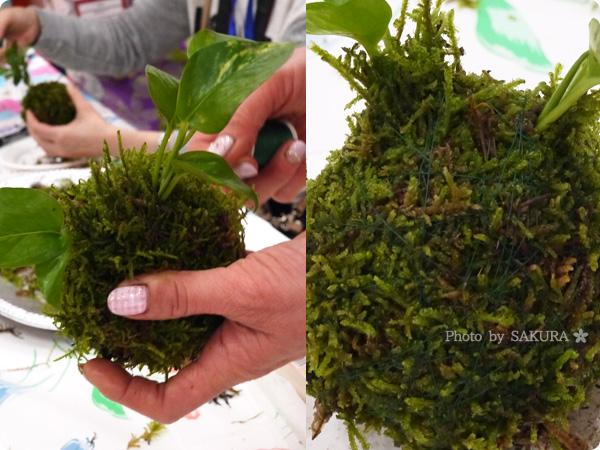 VELTRAベルトラのアクティビティ「季節の苔玉づくり体験」貼りつけた苔の上からミシン糸をぐるぐる巻く