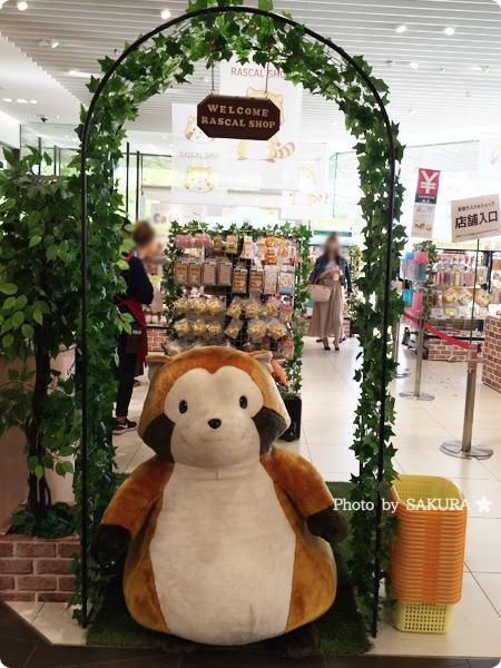 原宿ラスカルショップ 店頭には大きなぬいぐるみラスカルが!