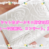 小さくてオシャレなガールミニ財布は選べる40色!パーティーや結婚式、コンサート、旅行用に