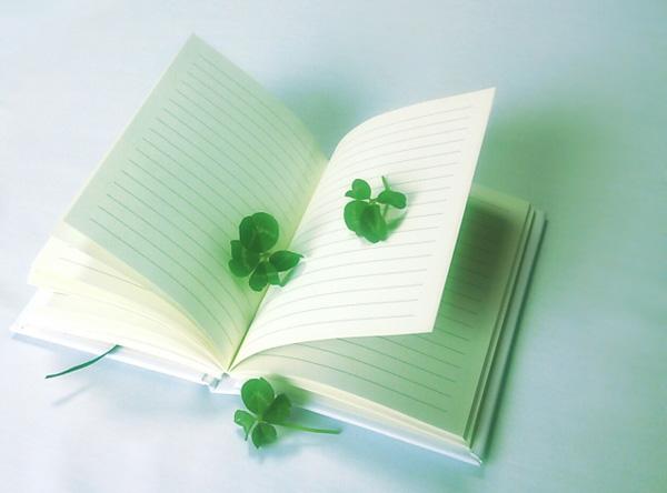 未来手帳と未来日記、どう違う?