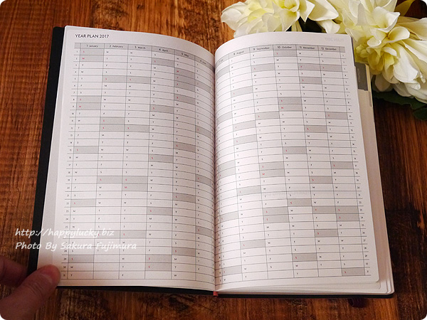 2017手帳・スケジュール帳 EDiT(エディット)1日1ページ 2017年1月始まり B6変型(ETA)/スープル 年間プラン