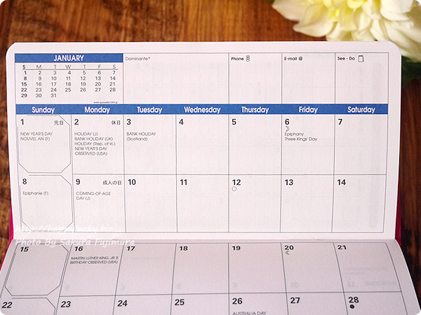 ロフト限定2017年手帳QuoVadis(クオバディス)パピエティグル ビソプランマンスリータイプ マンスリーカレンダー部分アップ