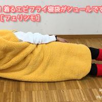YOU+MORE!着るエビフライ寝袋がシュールですごい!宴会芸にも?[フェリシモ]