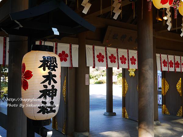 櫻木神社 提灯やのれんがかわいい