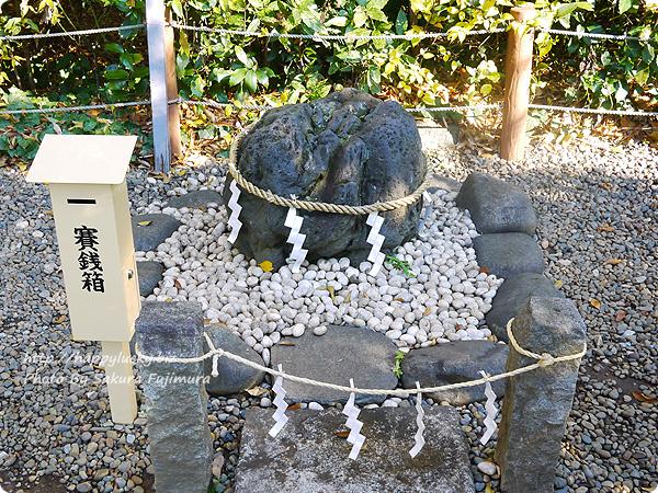 櫻木神社 健康のなで石