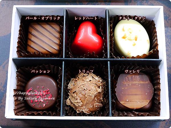 【バレンタイン2018】デジレー大丸松坂屋限定ショコラ<大丸松坂屋限定> デジレーショコラ6個入り
