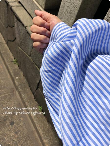 袖口バルーンの刺繍ブラウス 着画袖アップ 【楽天市場LFO】