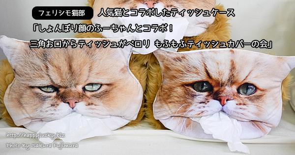 【フェリシモ猫部】人気猫とコラボのティッシュケース「しょんぼり顔のふーちゃんとコラボ! 三角お口からティッシュがペロリ もふもふティッシュカバーの会」[フェリシモ]