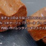 生チョコのような口どけ!神楽坂ル コキヤージュ「テリーヌ ドゥ ショコラ」内祝いやバレンタインギフトで人気