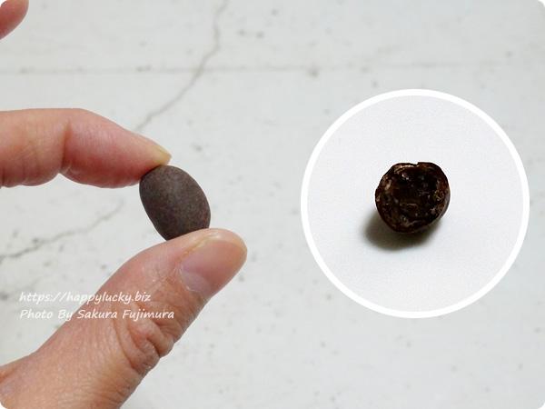 甘納豆専門店・銀座鈴屋「銀座六花」大納言あずき×しょこら 1粒のサイズと断面