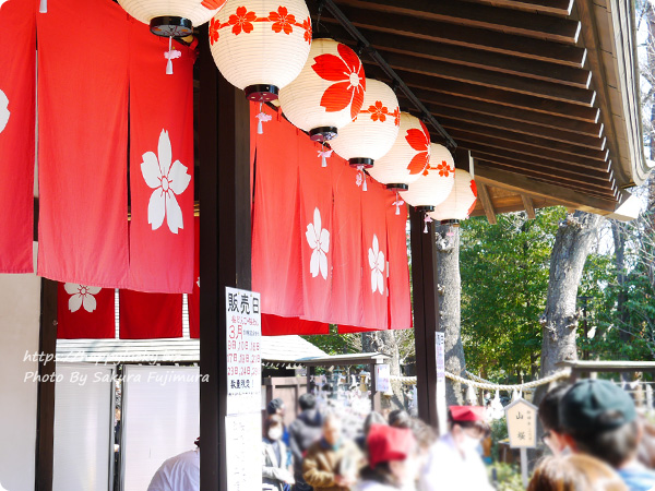 櫻木神社 2019年[平成31年]さくらの日まいり 桜めしと桜だんごの列に並んだ
