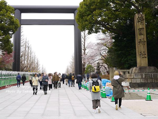 【桜2019】千鳥ヶ淵周辺から靖国神社へ