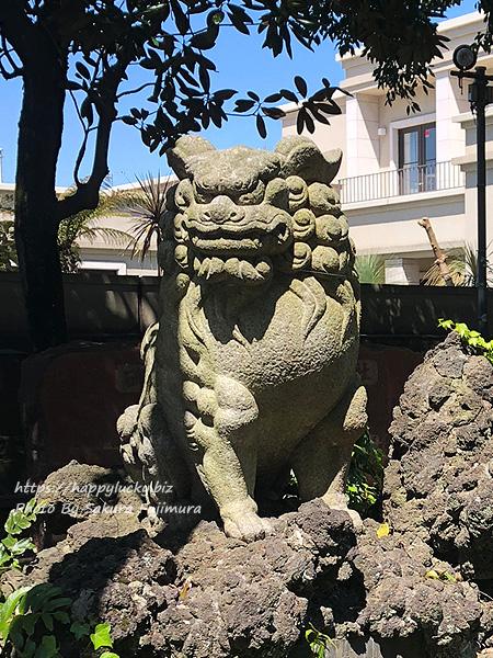 【御朱印巡り】柏諏訪神社 狛犬