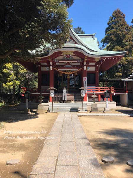 【御朱印巡り】柏諏訪神社 拝殿